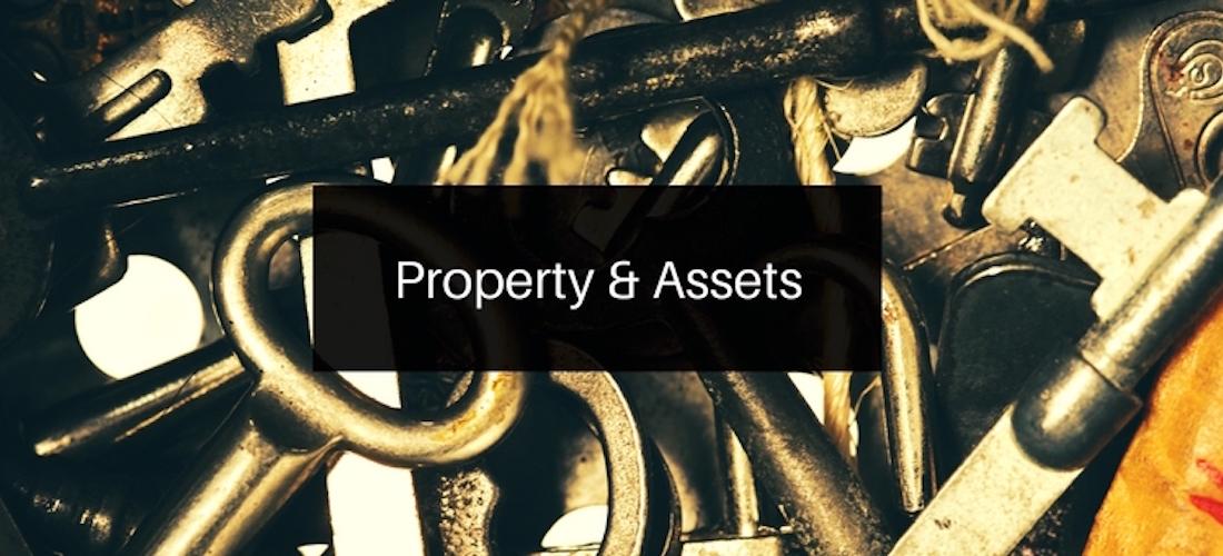Property & Assets